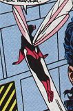 Wasp from AWC #49.